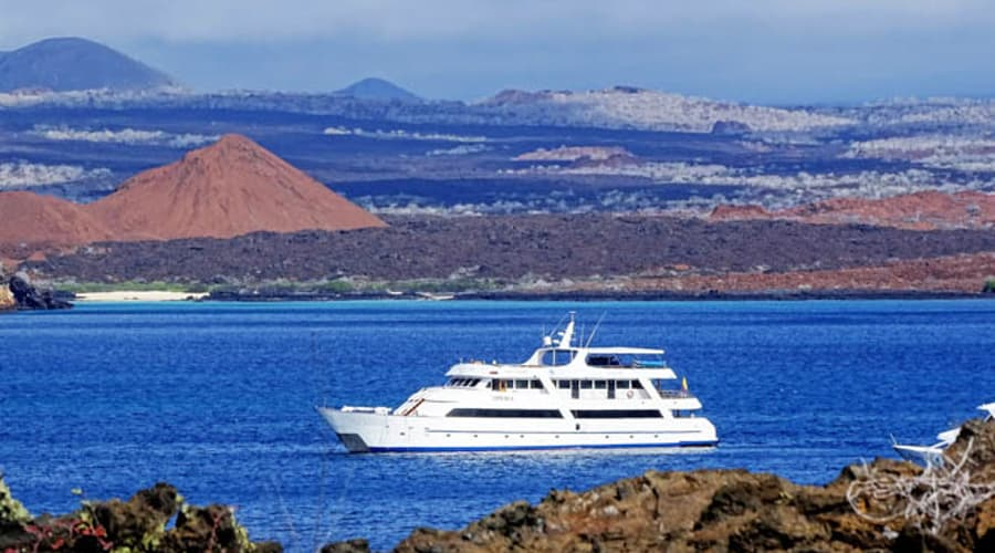 The Sea Star Journey, a yacht offering luxury cruises, traveling in the waters off the Galapagos.