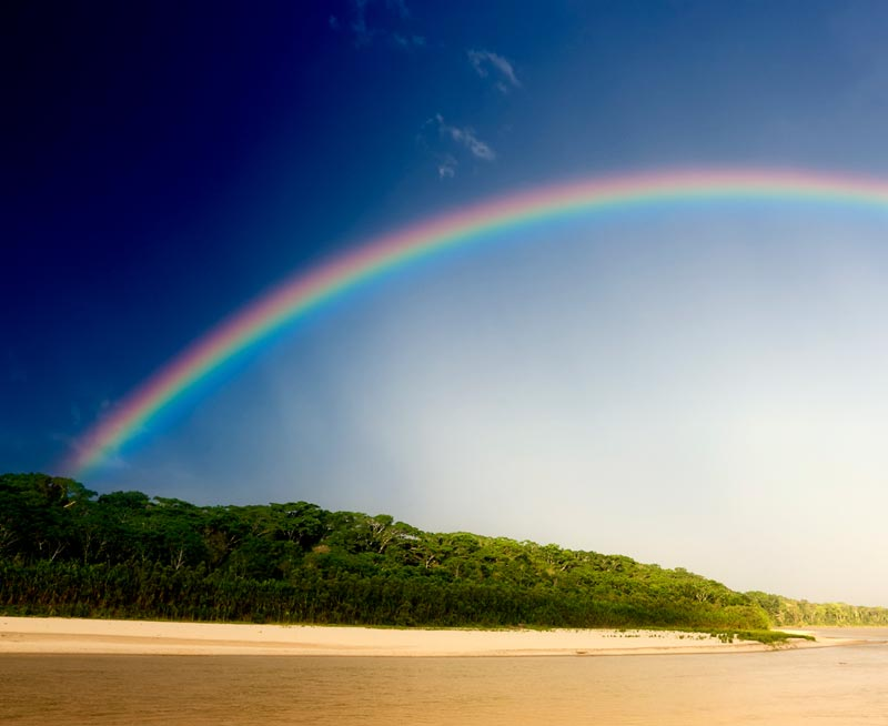 A rainbow in a blue and white sky over the treetops growing by the water in the Amazon Rainforest.
