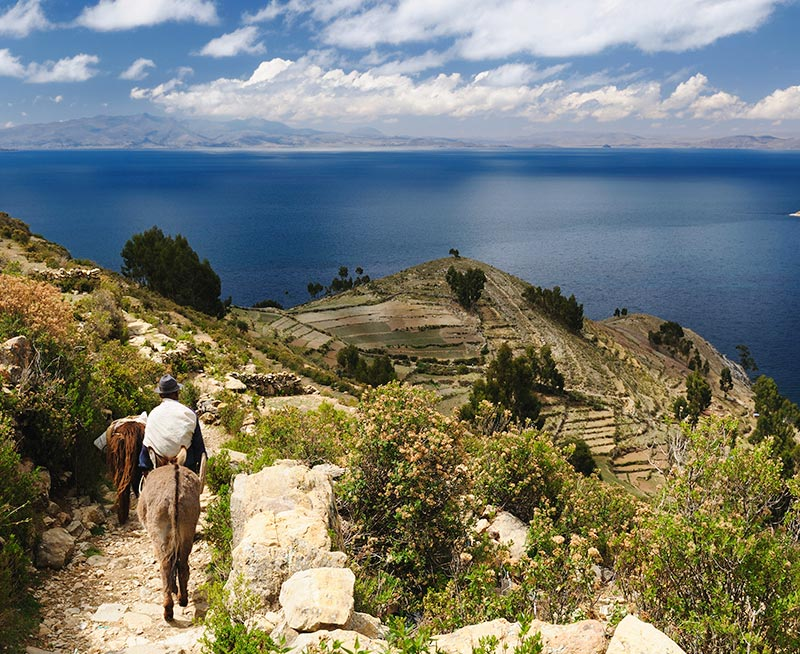 A man and donkey walking down a path on Taquile Island, an indigenous island on Lake Titicaca.
